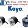 koyo-viet-nam